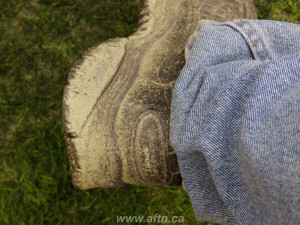 BC Place turf pitch shoe damage